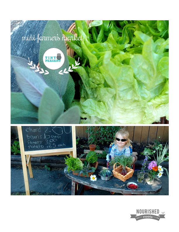 NR Tiny Peasant Mini Farmer's Market COVER