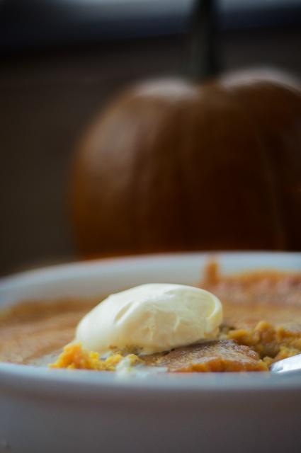 pumpkin-custard-3