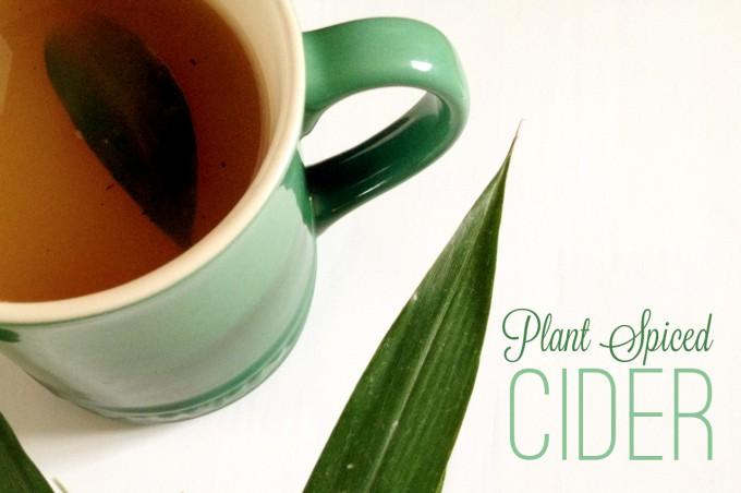 Plant Spiced Cider Banner