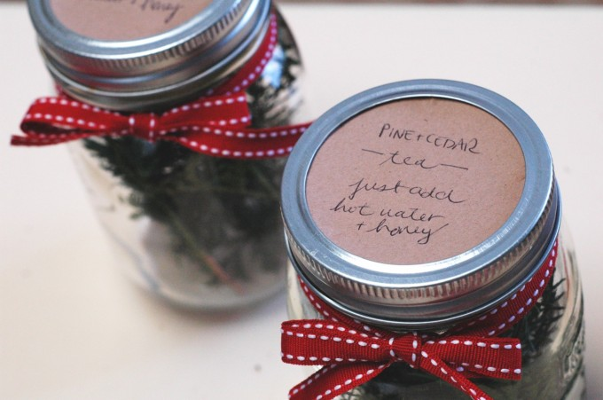 pine-cedar tea gifts