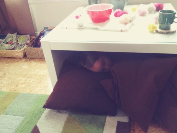 coco nest