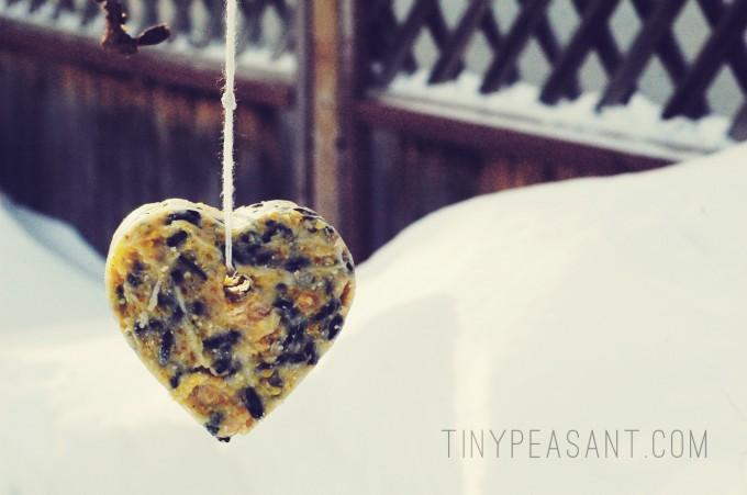 heart coconut bird feeder single