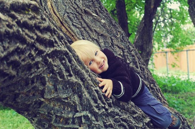 TP tree hugger