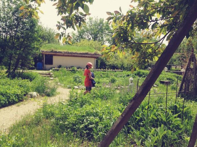 snac garden