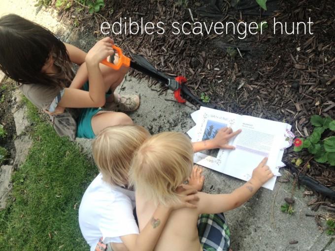 edibles hunt team