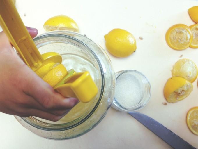 tp lemonade lemons squeeze
