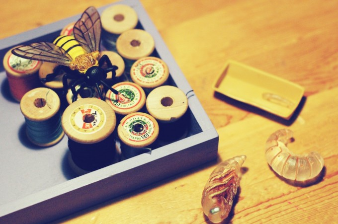 tp bee life cycle play