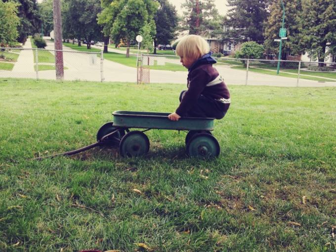 tp milo wagon park