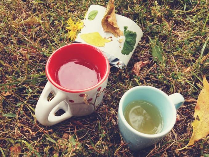 tp park tea