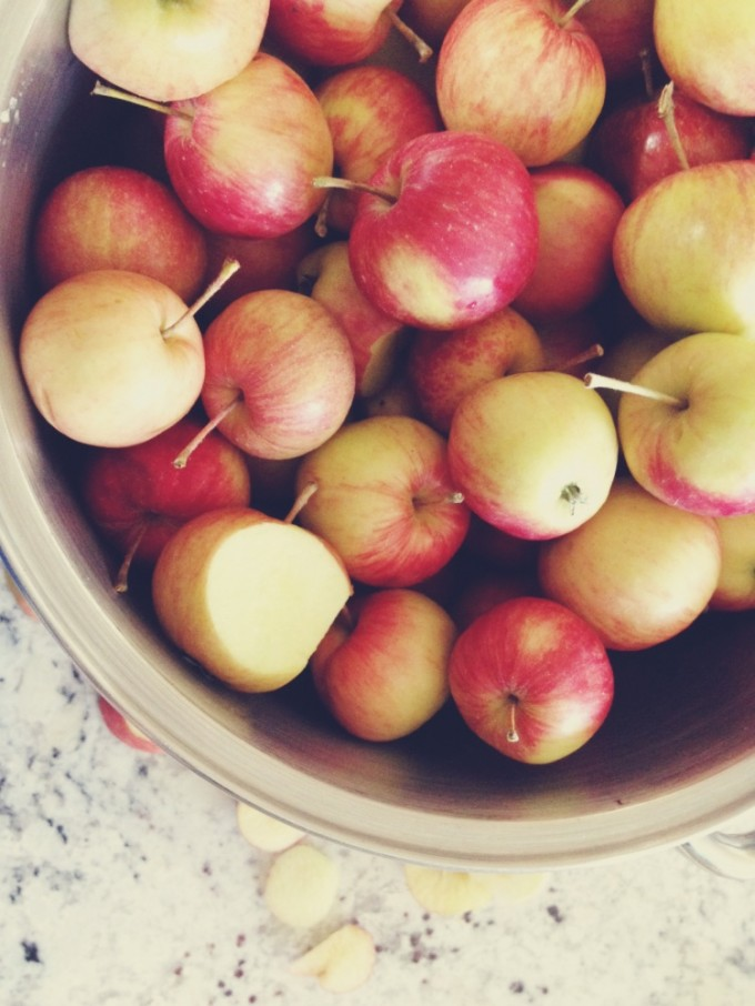 tp sorted apples