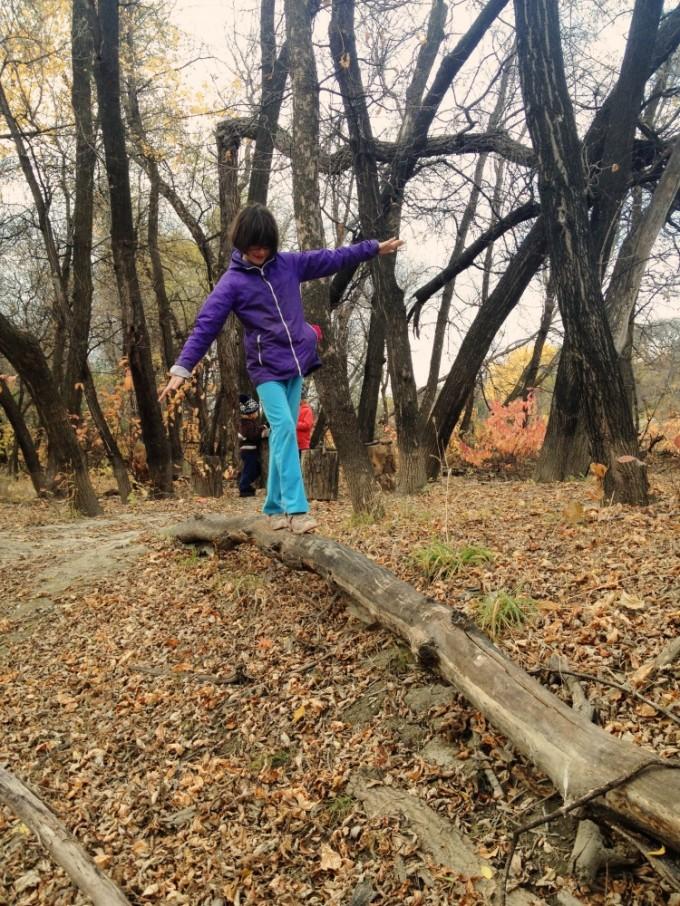 Forest Yarn Blast Clean Up 4