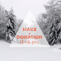 Tiny-Advent-Donation-Button