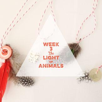 Tiny-Advent-Week-3b