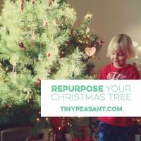 Repurpose Your Christmas Tree Badge