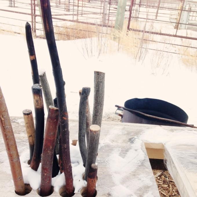 TP fort whyte bannock sticks