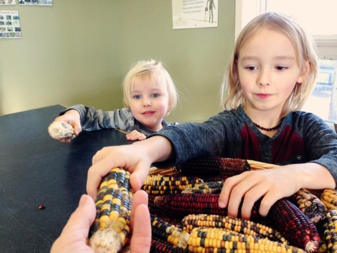 TP fort whyte corn famers