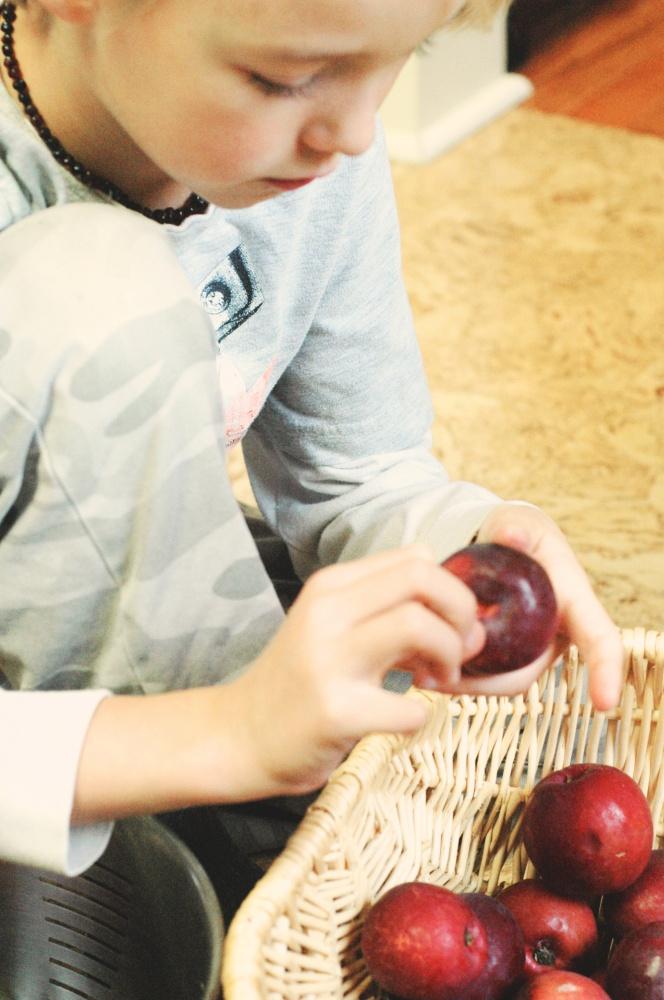 TP making applesauce