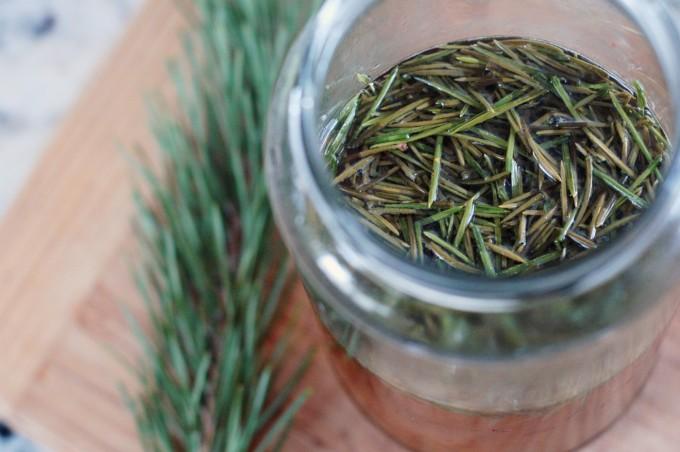 TP pine needle tea 2