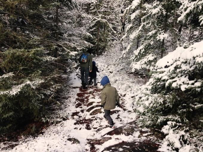 TP winter nature walk minaki 2