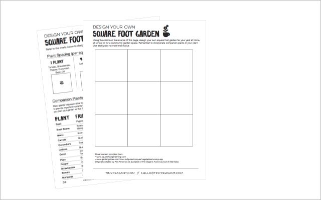 TP square foot handout
