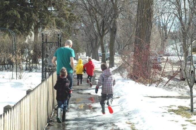 TP winter spring run