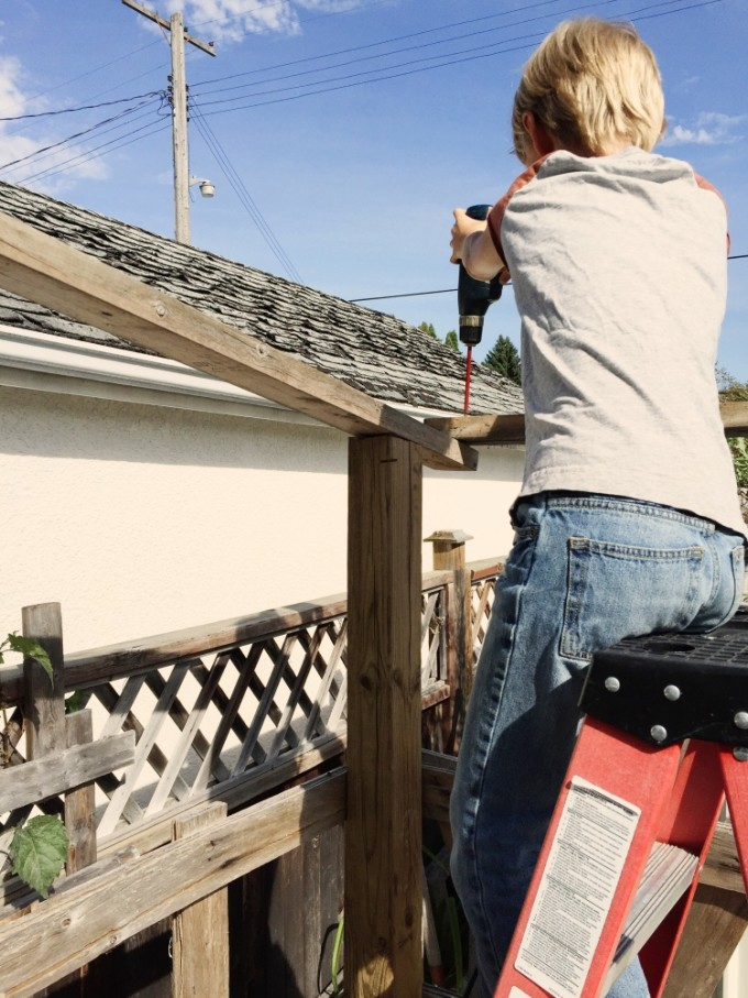 tp-co-playhouse-roofing