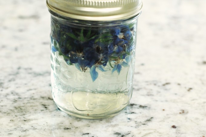 tp-borage-simple-syrup-water