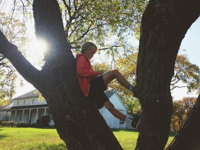 tp-reading-tree