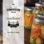 tp-uh-fermentation-workshop-teaser
