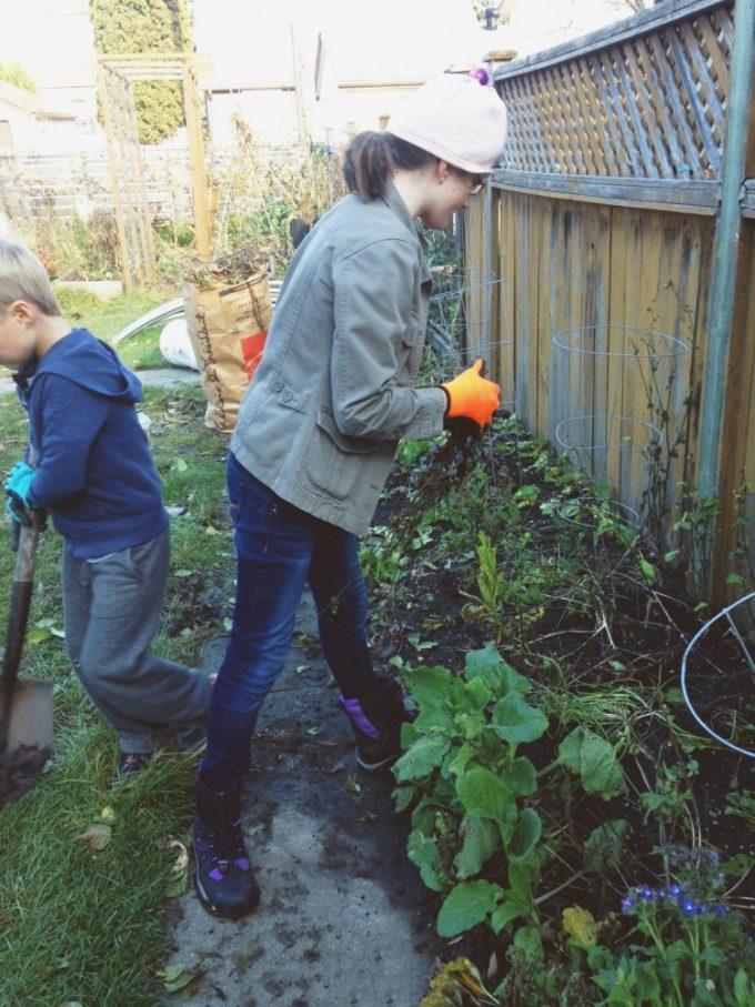 tp-garden-clean-up